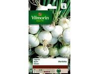 Ajuin Witte Barletta - Sb-Vilmorin