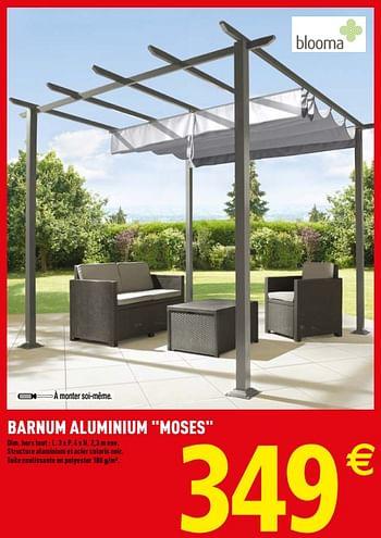 Promotion Brico Depot Barnum Aluminium Moses Blooma Jardin Et Fleurs Valide Jusqua 4 Promobutler