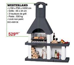 Barbecues en béton westerland