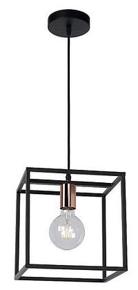 Lucide LED Hanglamp Arthur 1 x E27 zwart-Huismerk - Makro