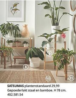 Satsumas plantenstandaard