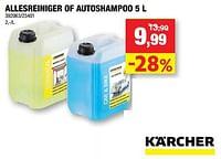 Allesreiniger of autoshampoo-Kärcher