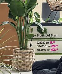 Bloempot bram-Huismerk - Leen Bakker