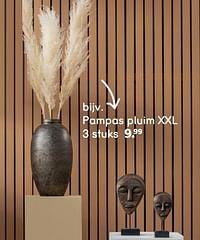 Pampas pluim xxl-Huismerk - Leen Bakker
