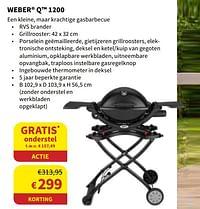 Weber q 1200-Weber