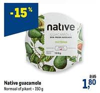 Native guacamole-Native