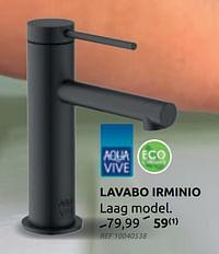 Lavabo irminio-AQUA VIVE