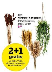 Kunststof hangplant buxus-Huismerk - Leen Bakker