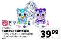 Hatchimals hatchibabies-Spin Master