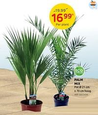 Palm mix-Huismerk - Brico