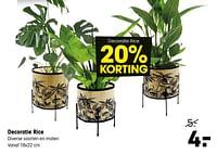 Decoratie rice-Huismerk - Kwantum