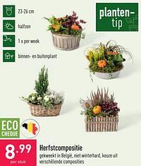 Herfstcompositie-Huismerk - Aldi