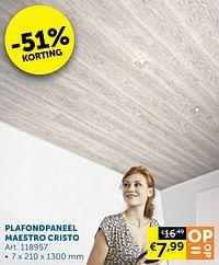 Plafondpaneel maestro cristo-Huismerk - Zelfbouwmarkt