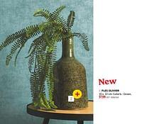 Fles olivier-Huismerk - BricoPlanit