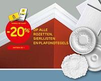 -20% op alle rozetten, sierlijsten en plafondtegels-Huismerk - Brico