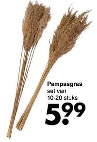 Pampasgras-Huismerk - Wibra