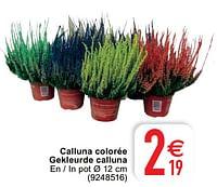 Calluna colorée gekleurde calluna-Huismerk - Cora
