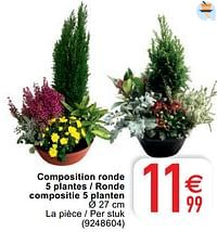 Composition ronde 5 plantes - ronde compositie 5 planten-Huismerk - Cora