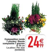 Composition ronde 7 plantes - ronde compositie 7 planten-Huismerk - Cora