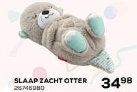 Slaap zacht otter-Fisher-Price
