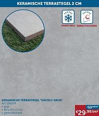 Aanbiedingen Keramische terrastegel grizzly grijs -  - Geldig van 25/05/2021 tot 21/06/2021 bij Zelfbouwmarkt