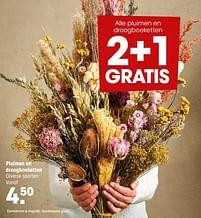 Aanbiedingen Pluimen en droogboeketten - Huismerk - Kwantum - Geldig van 20/09/2021 tot 03/10/2021 bij Kwantum